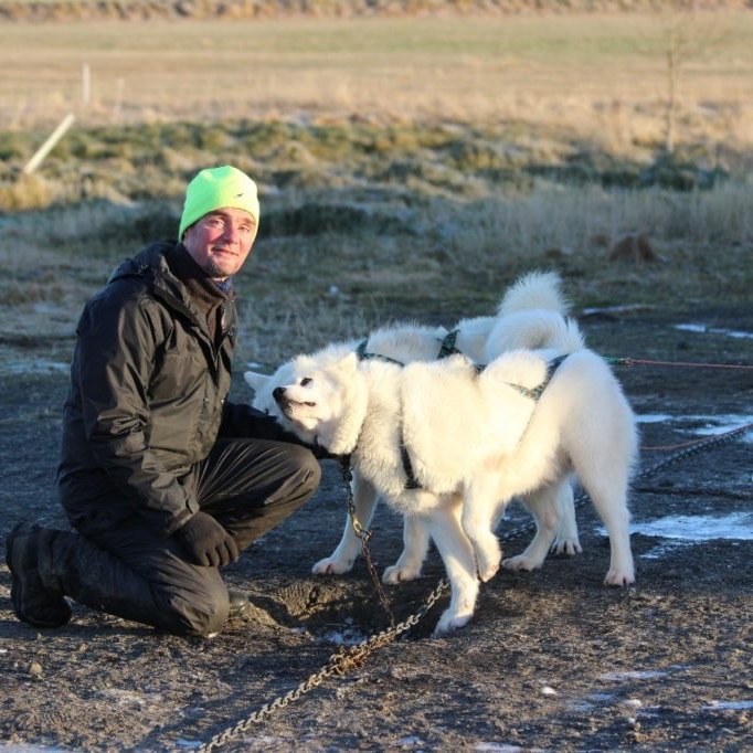soul of company siggi owner and huskies