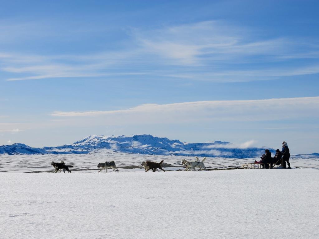 christmas period dogsledding iceland 2017 family adventure