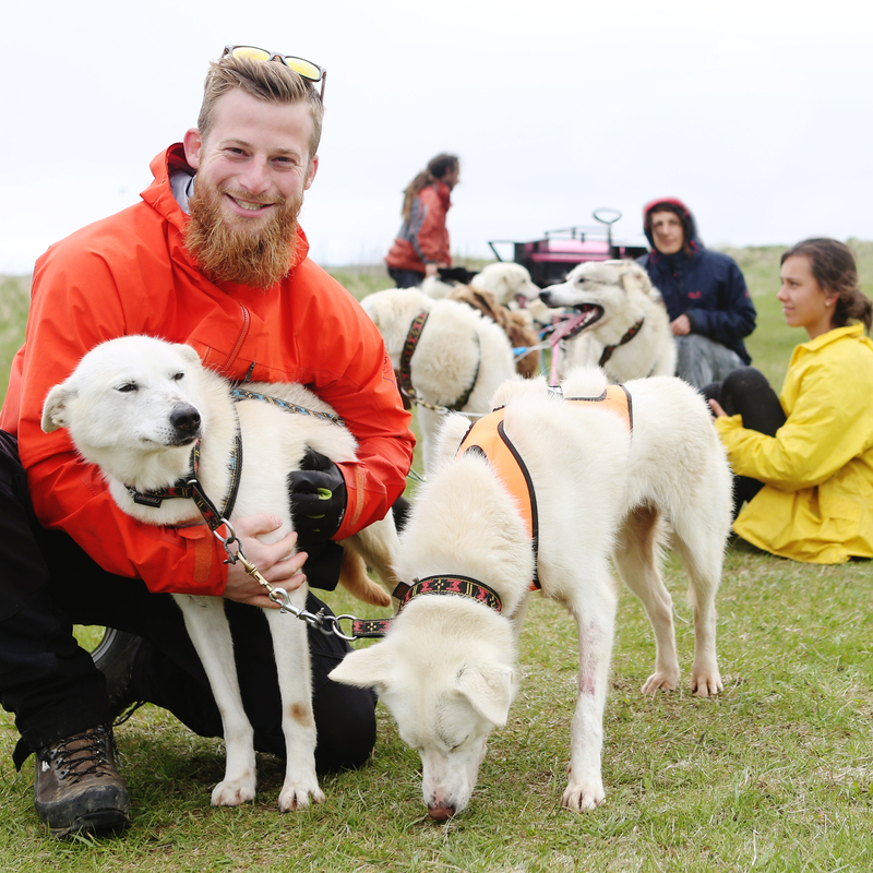 tour with transfer icon dogsledding